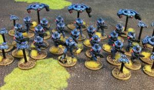 Blue-Concord-1
