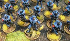 Blue-Concord-2